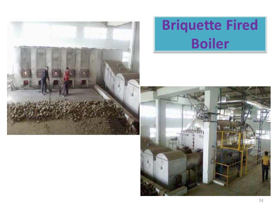 Briquette Fired Boiler