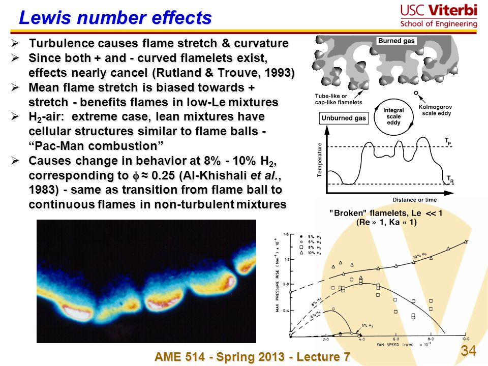 Lewis number effects Turbulence causes flame stretch & curvature