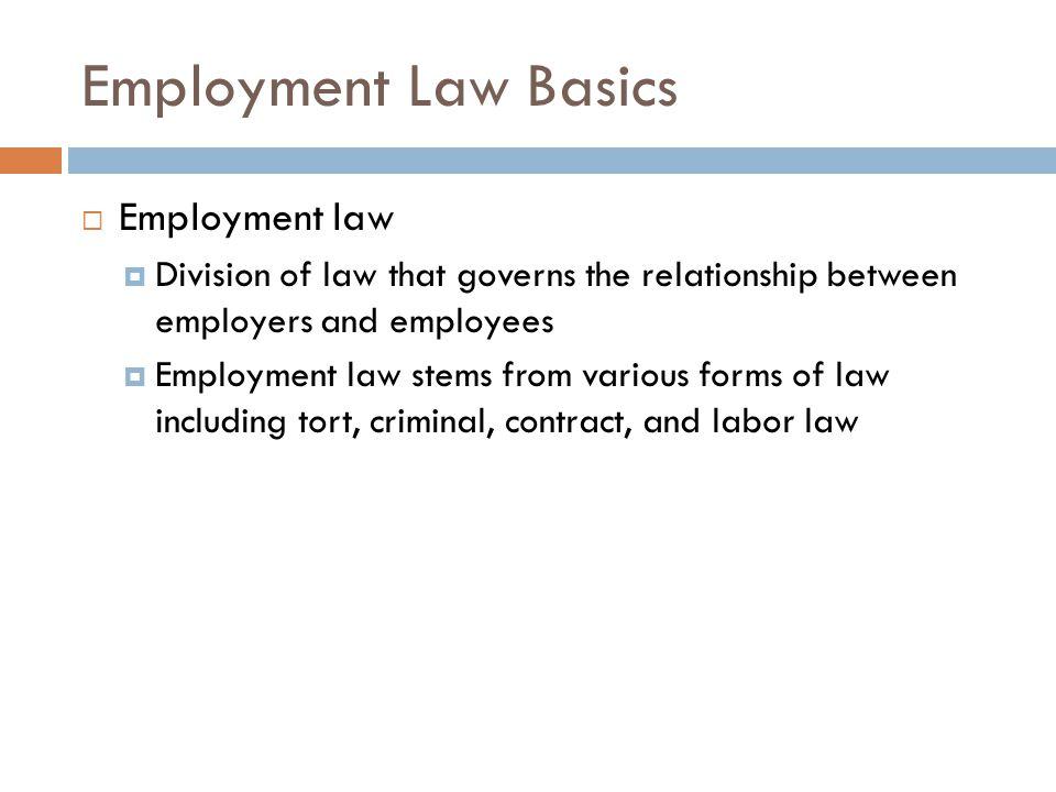 Employment Law Basics Employment law