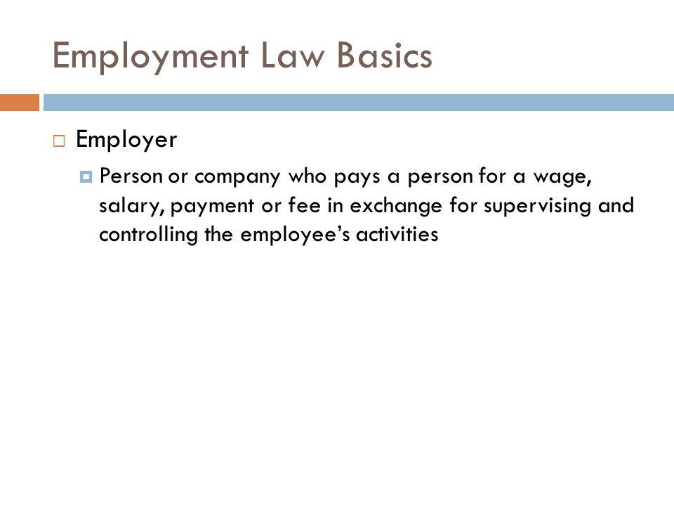 Employment Law Basics Employer