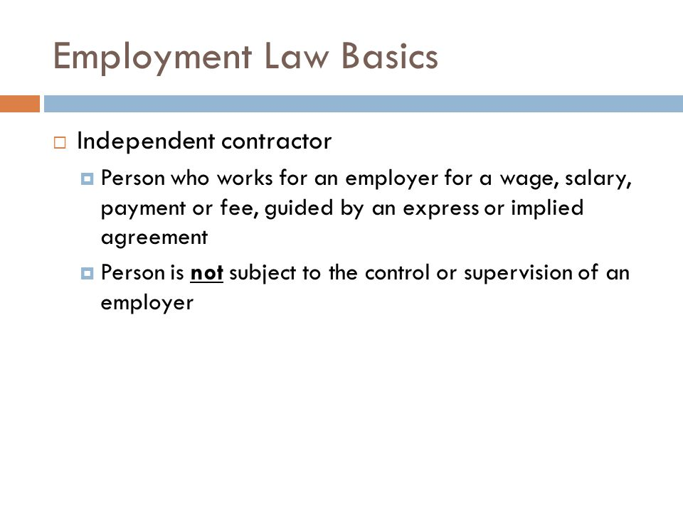 Employment Law Basics Independent contractor