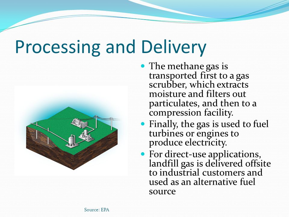 Processing and Delivery