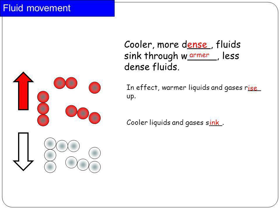 Fluid movement Cooler, more d____, fluids sink through w_____, less dense fluids. ense. armer. In effect, warmer liquids and gases r___ up.
