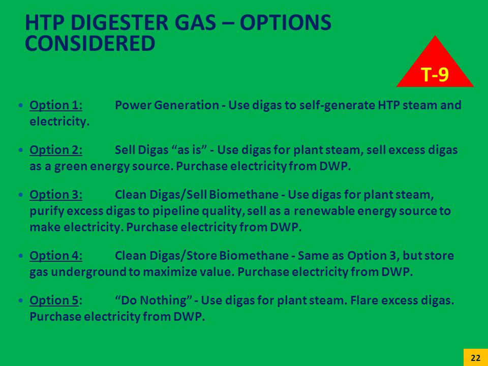 HTP Digester Gas – Options Considered