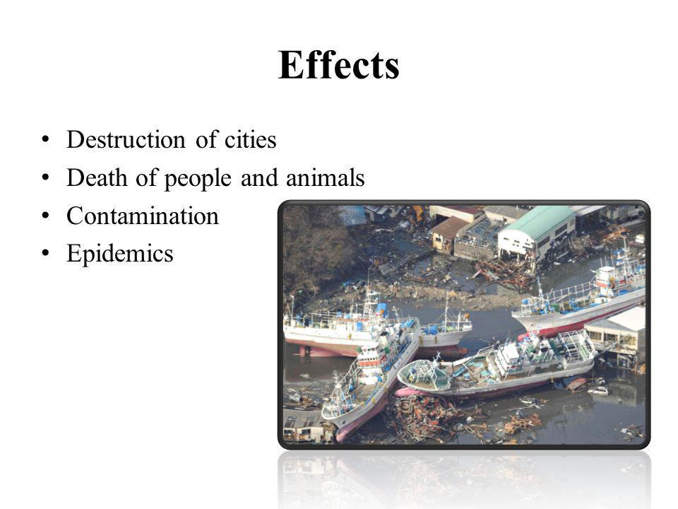 Effects Destruction of cities Death of people and animals