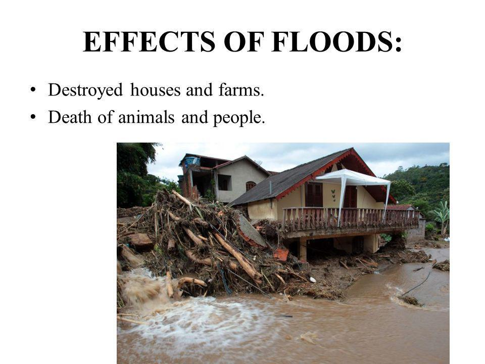 EFFECTS OF FLOODS: Destroyed houses and farms.
