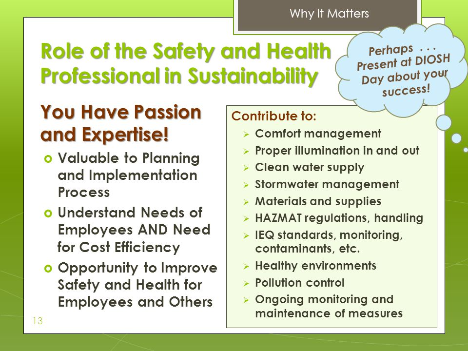Role of the Safety and Health Professional in Sustainability