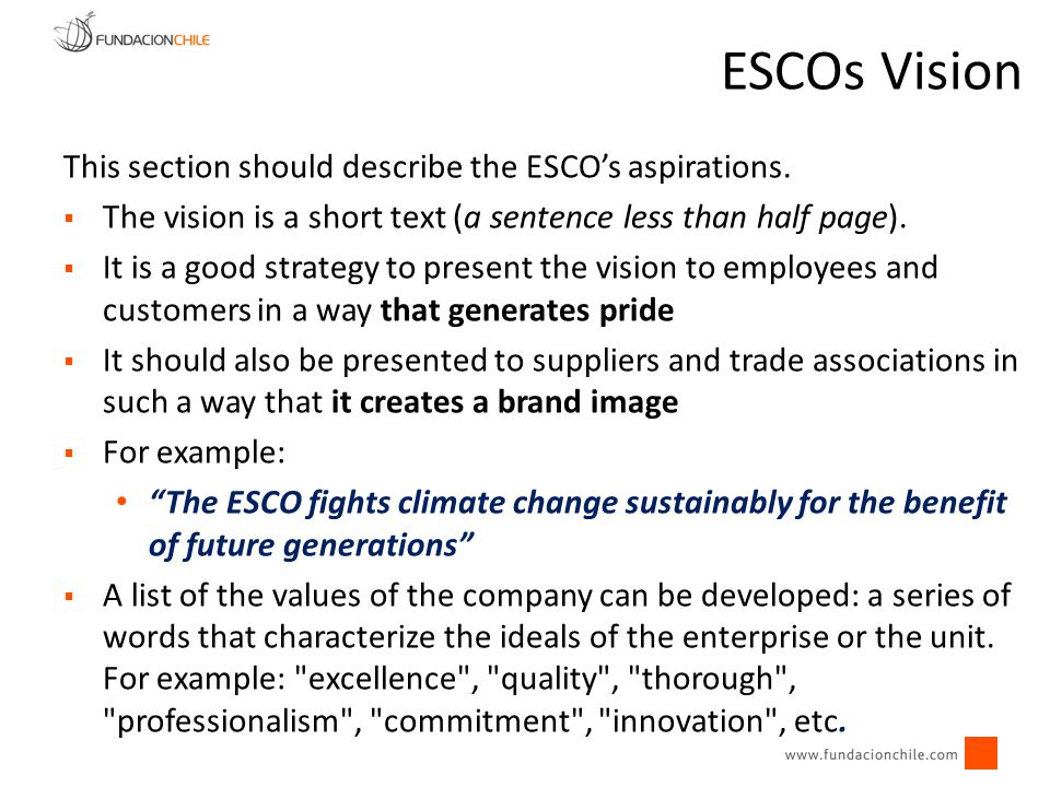 ESCOs Vision This section should describe the ESCO's aspirations.