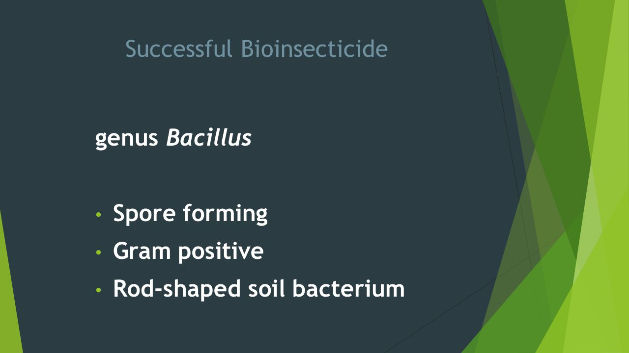 Successful Bioinsecticide