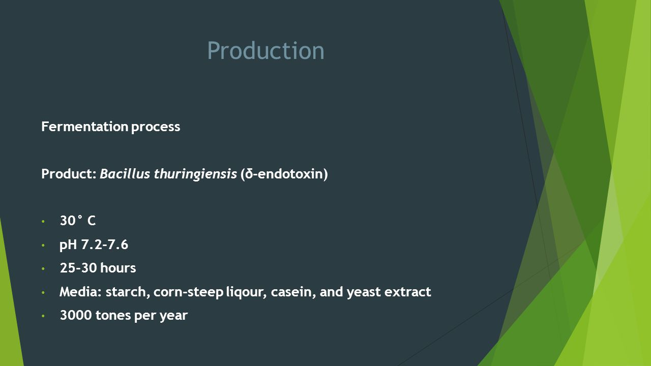 Production Fermentation process