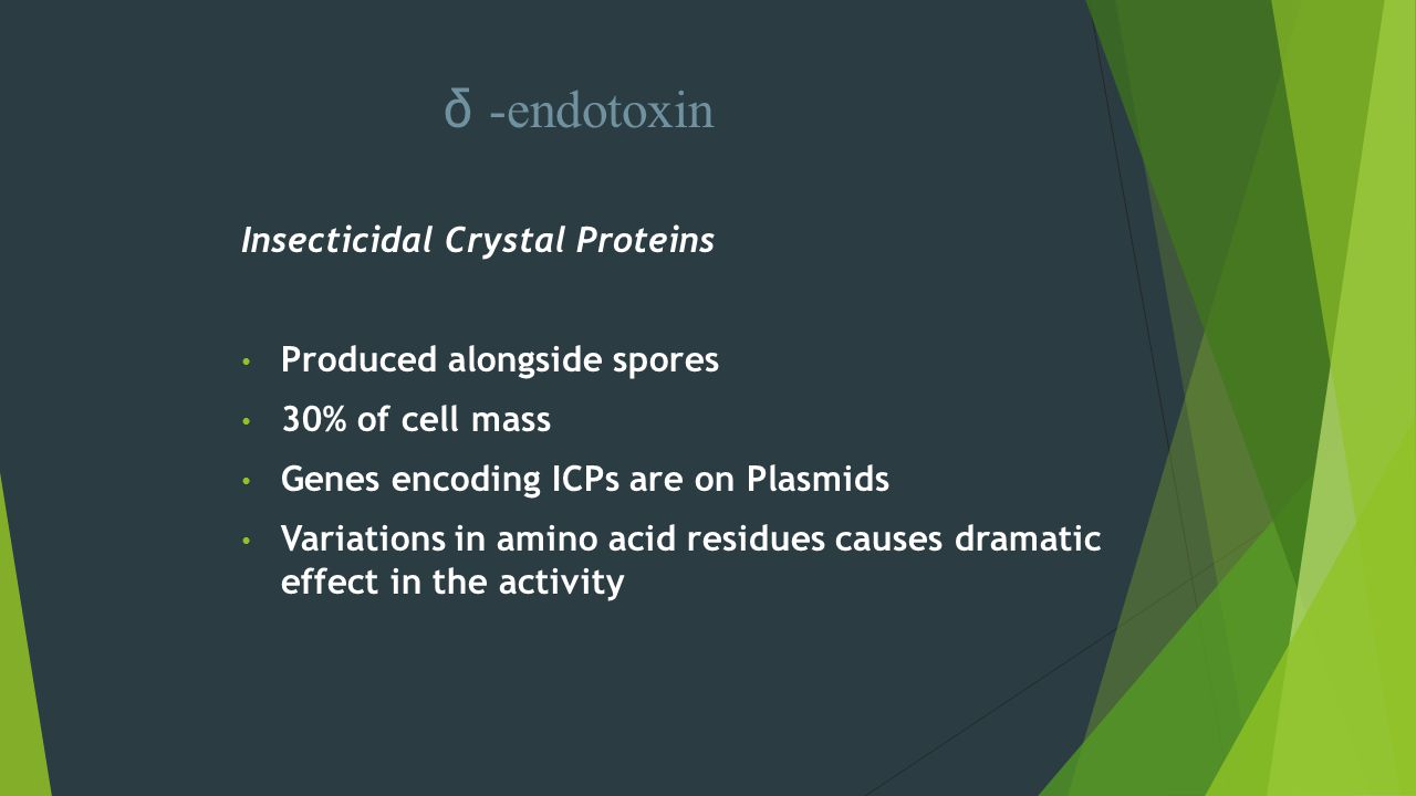 δ -endotoxin Insecticidal Crystal Proteins Produced alongside spores