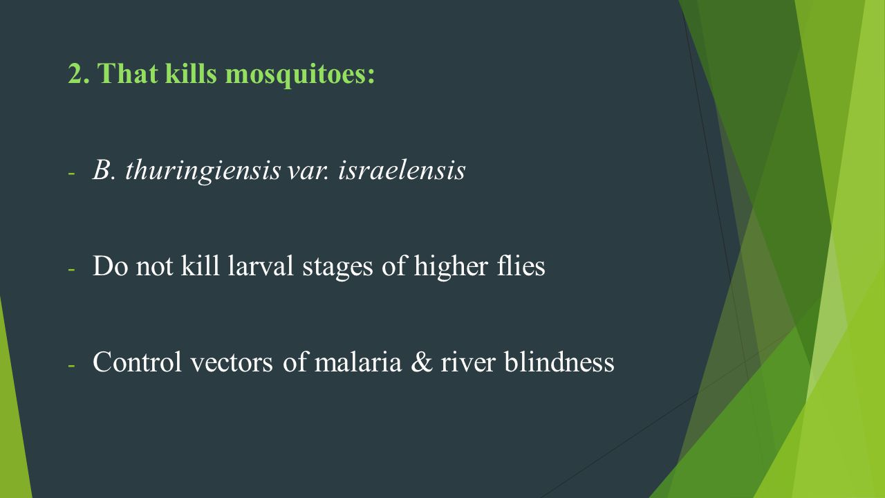 2. That kills mosquitoes: