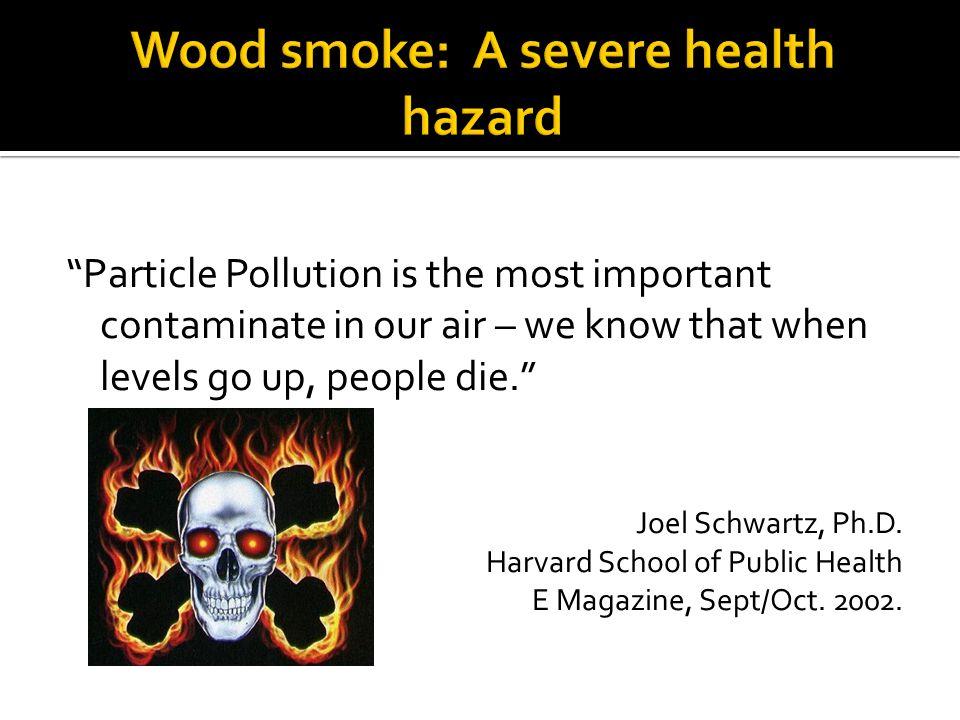 Wood smoke: A severe health hazard