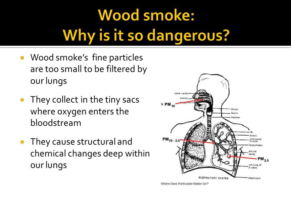 Wood smoke: Why is it so dangerous