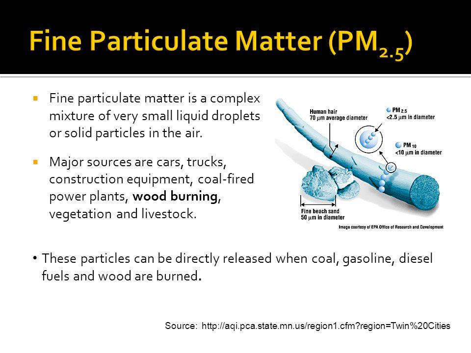 Fine Particulate Matter (PM2.5)