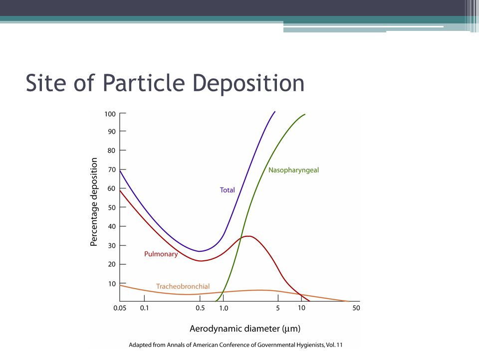 Site of Particle Deposition