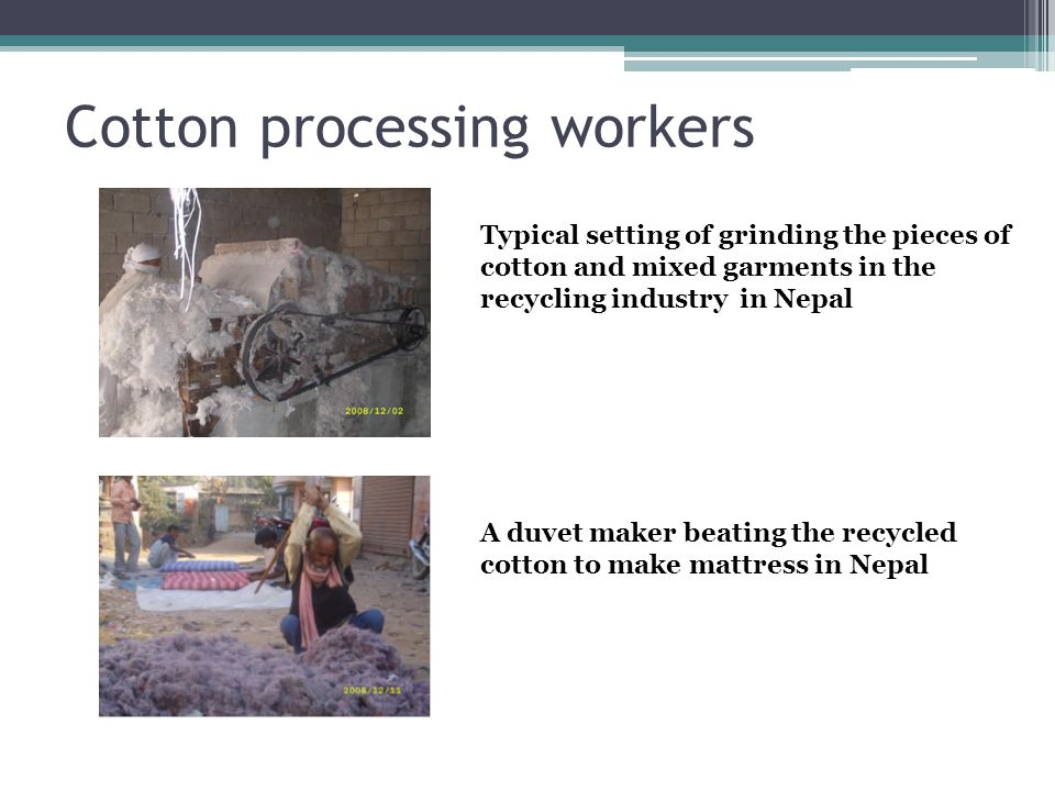 Cotton processing workers