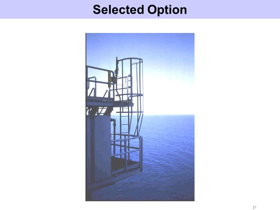 Selected Option