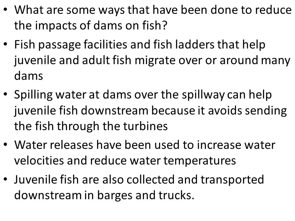 What are some ways that have been done to reduce the impacts of dams on fish