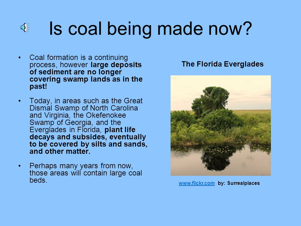 Is coal being made now Coal formation is a continuing process, however large deposits of sediment are no longer covering swamp lands as in the past!