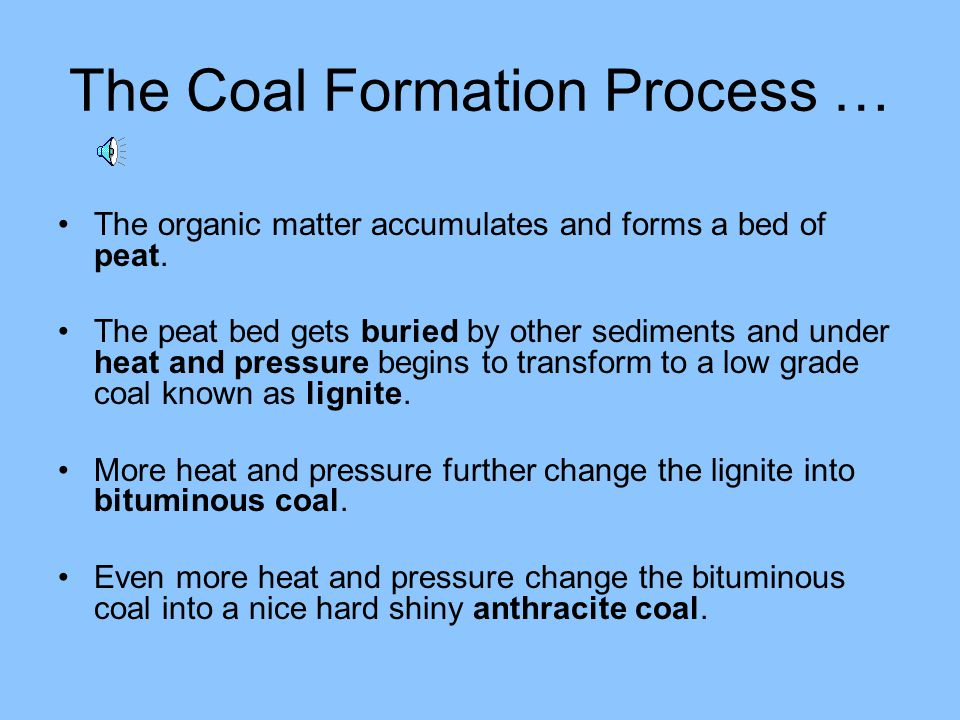 The Coal Formation Process …