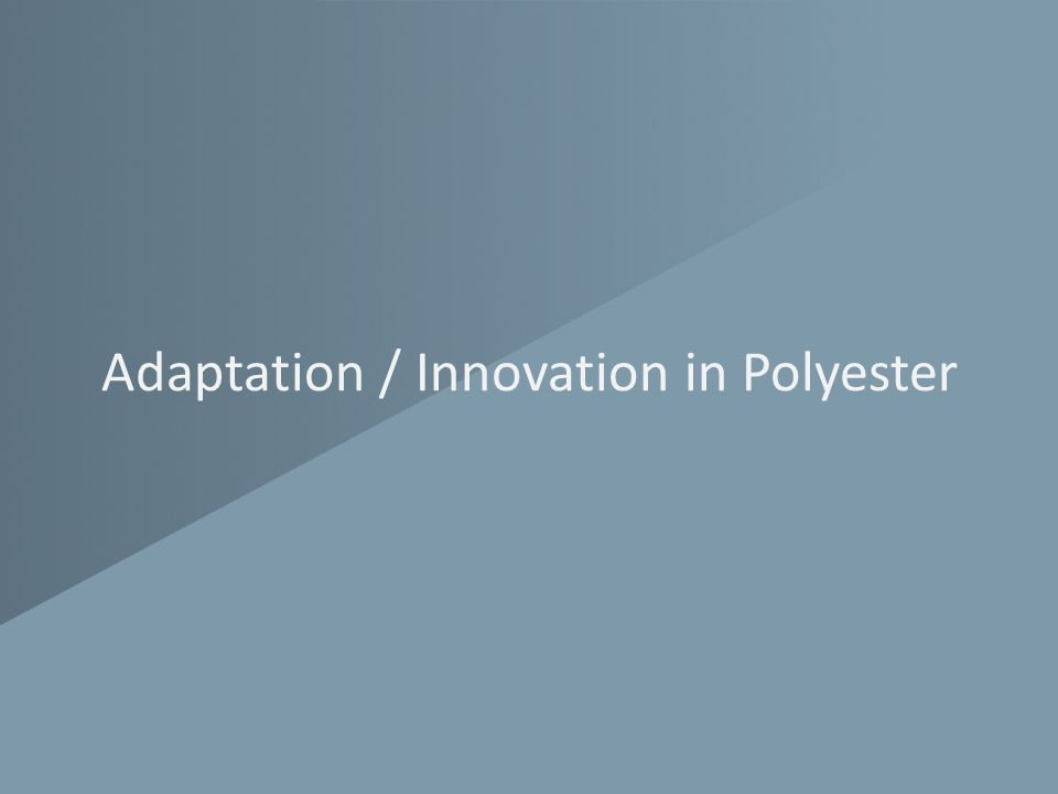 Adaptation / Innovation in Polyester