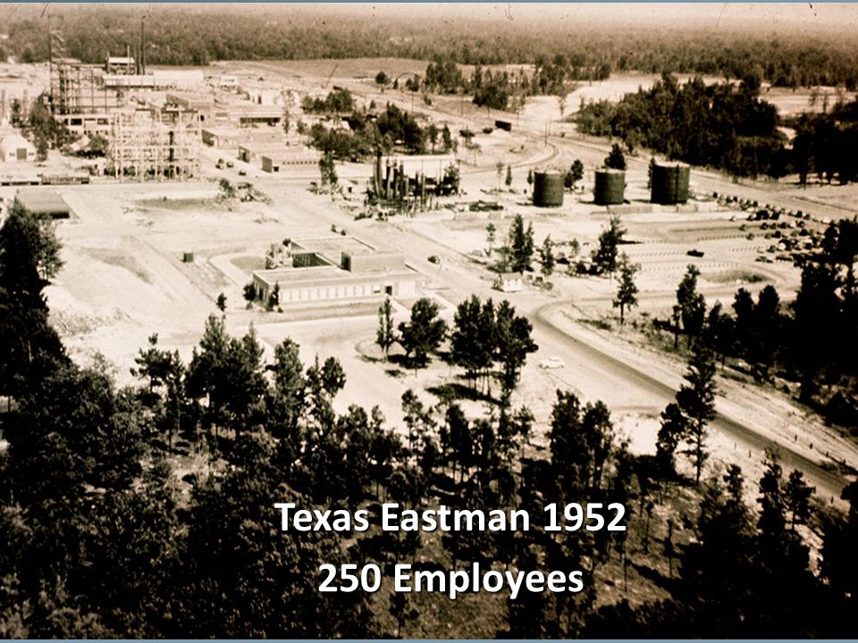 Texas Eastman 1952 250 Employees