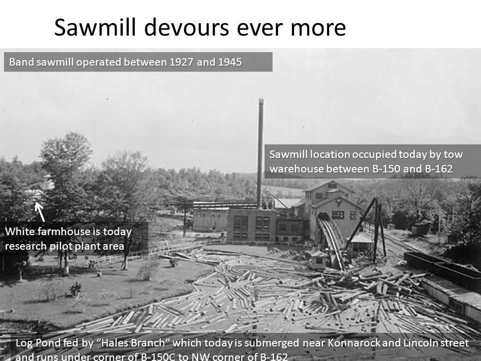 Sawmill devours ever more wood