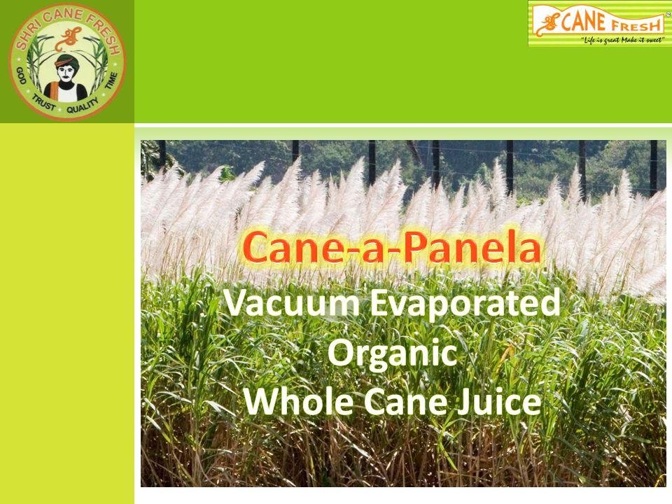 Cane-a-Panela Vacuum Evaporated Organic Whole Cane Juice