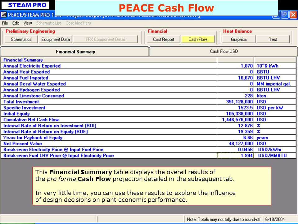 PEACE Cash Flow This Financial Summary table displays the overall results of. the pro forma Cash Flow projection detailed in the subsequent tab.