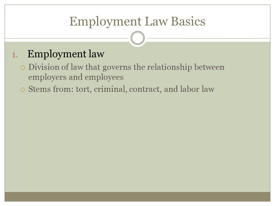 Employment Law Basics Employment law