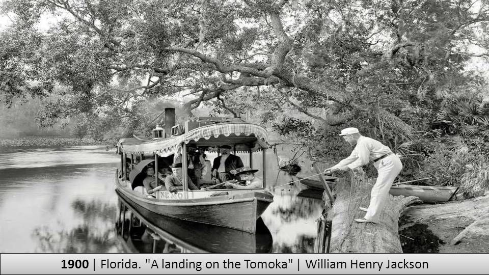 1900 | Florida. A landing on the Tomoka | William Henry Jackson