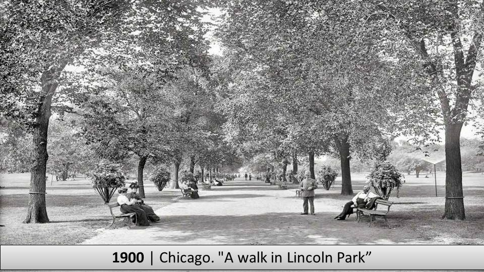 1900 | Chicago. A walk in Lincoln Park