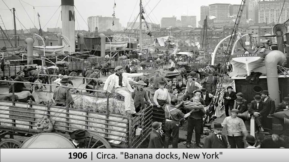 1906 | Circa. Banana docks, New York