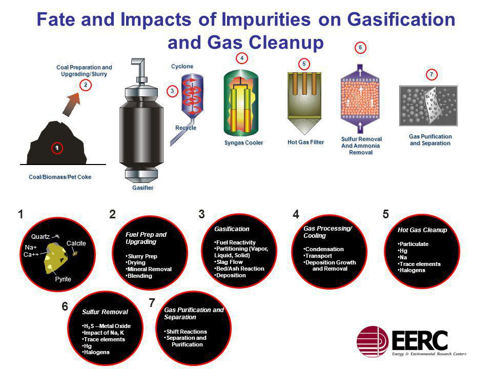 Fate and Impacts of Impurities on Gasification and Gas Cleanup