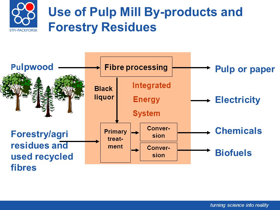 Use of Pulp Mill By-products and Forestry Residues