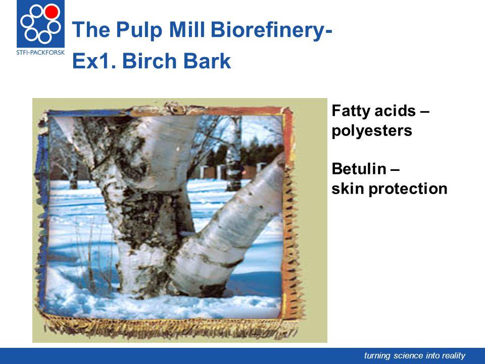 The Pulp Mill Biorefinery- Ex1. Birch Bark
