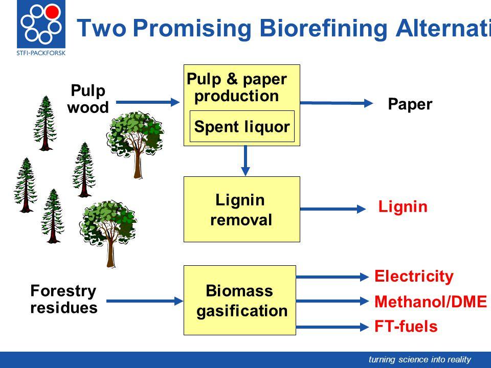 Two Promising Biorefining Alternatives