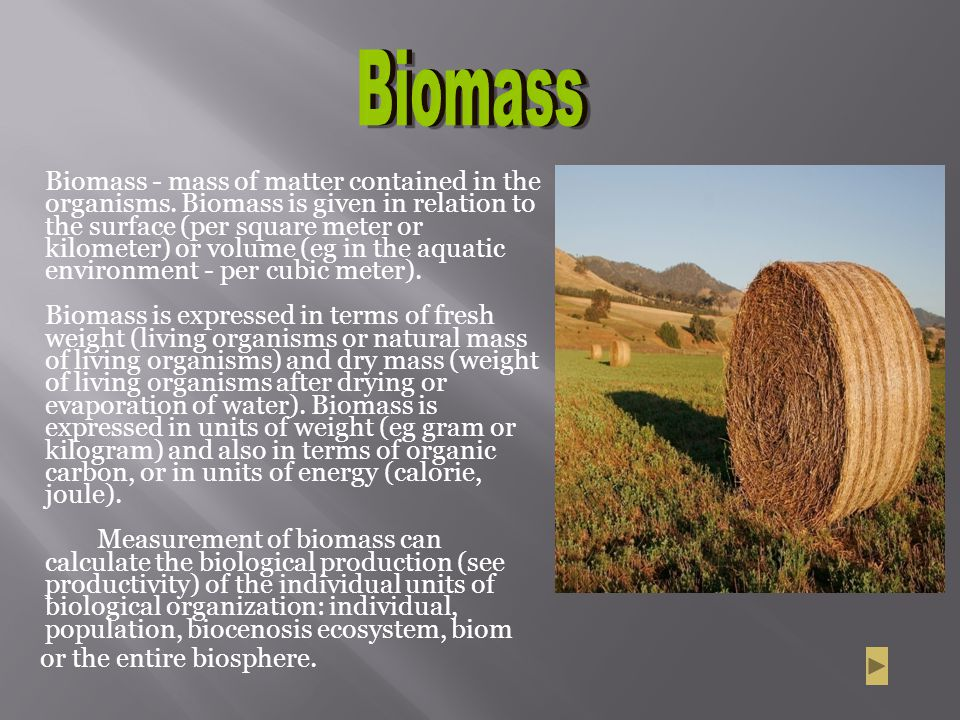 Biomass or the entire biosphere.