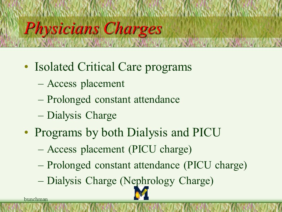 Physicians Charges Isolated Critical Care programs