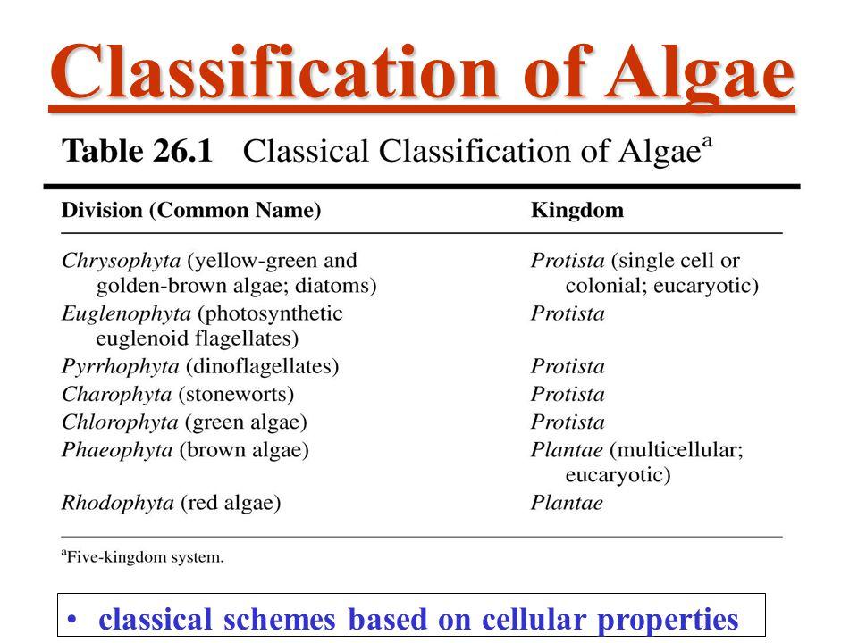 Classification of Algae