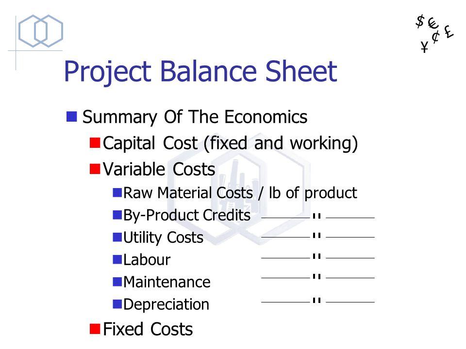 Project Balance Sheet Summary Of The Economics