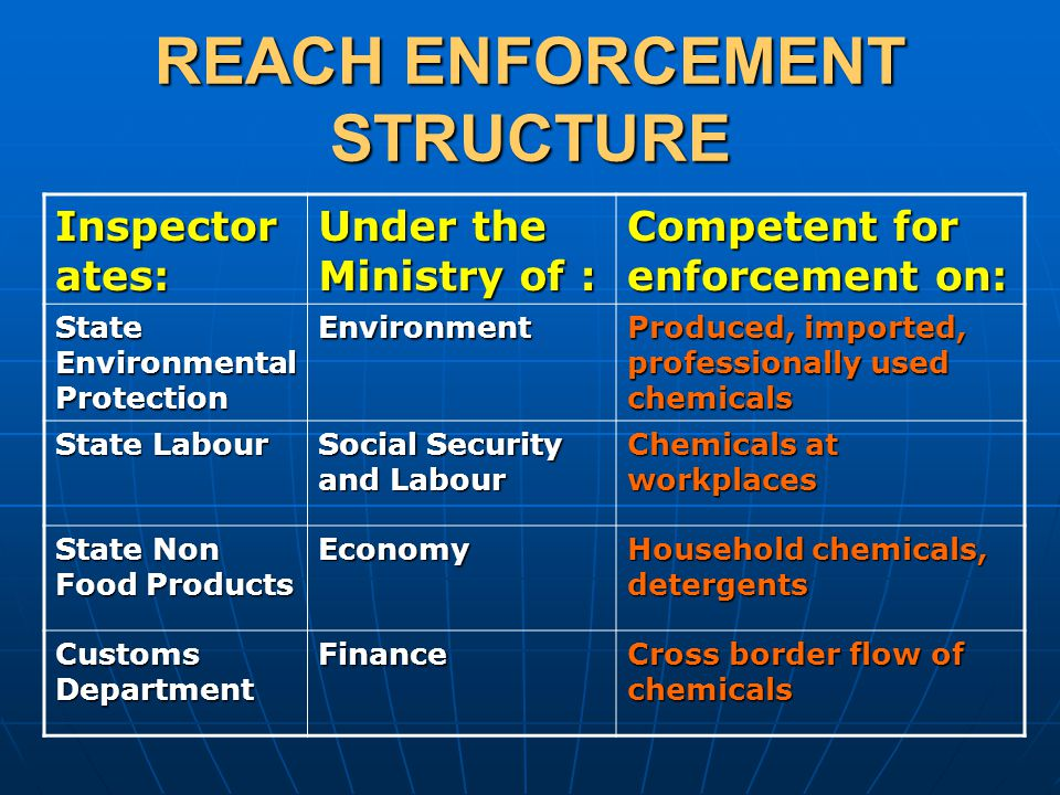 REACH ENFORCEMENT STRUCTURE