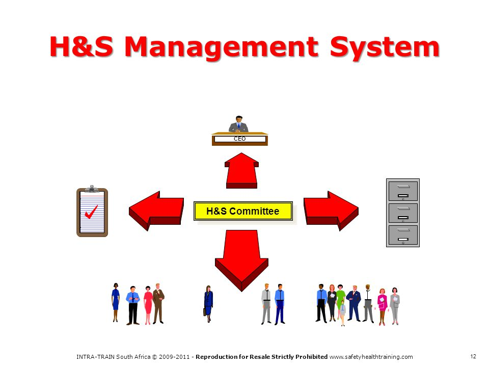 H&S Management System H&S Committee CEO