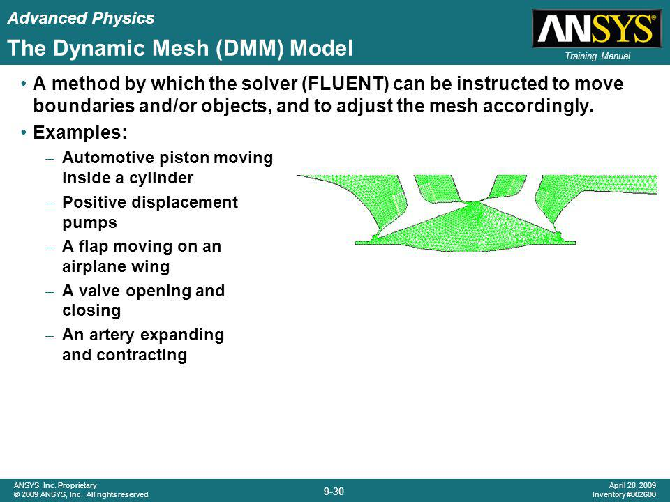 The Dynamic Mesh (DMM) Model