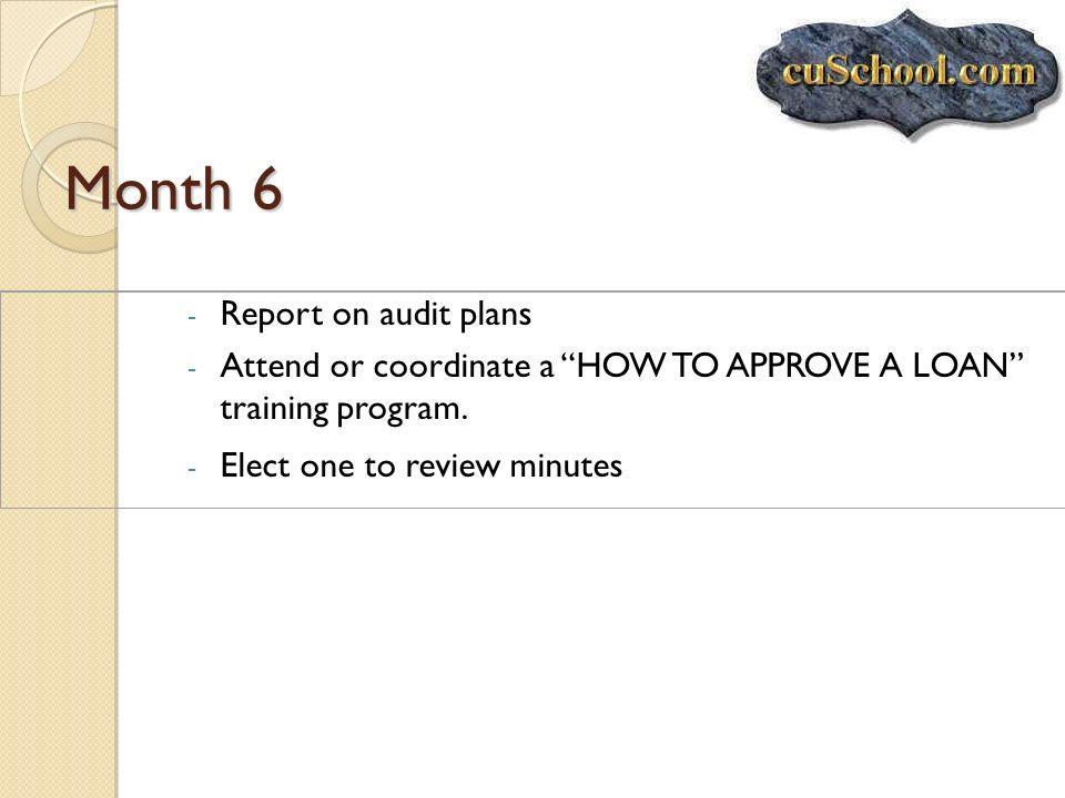 Month 6 Report on audit plans