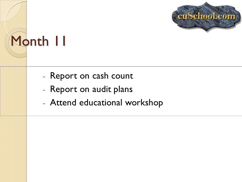 Month 11 Report on cash count Report on audit plans