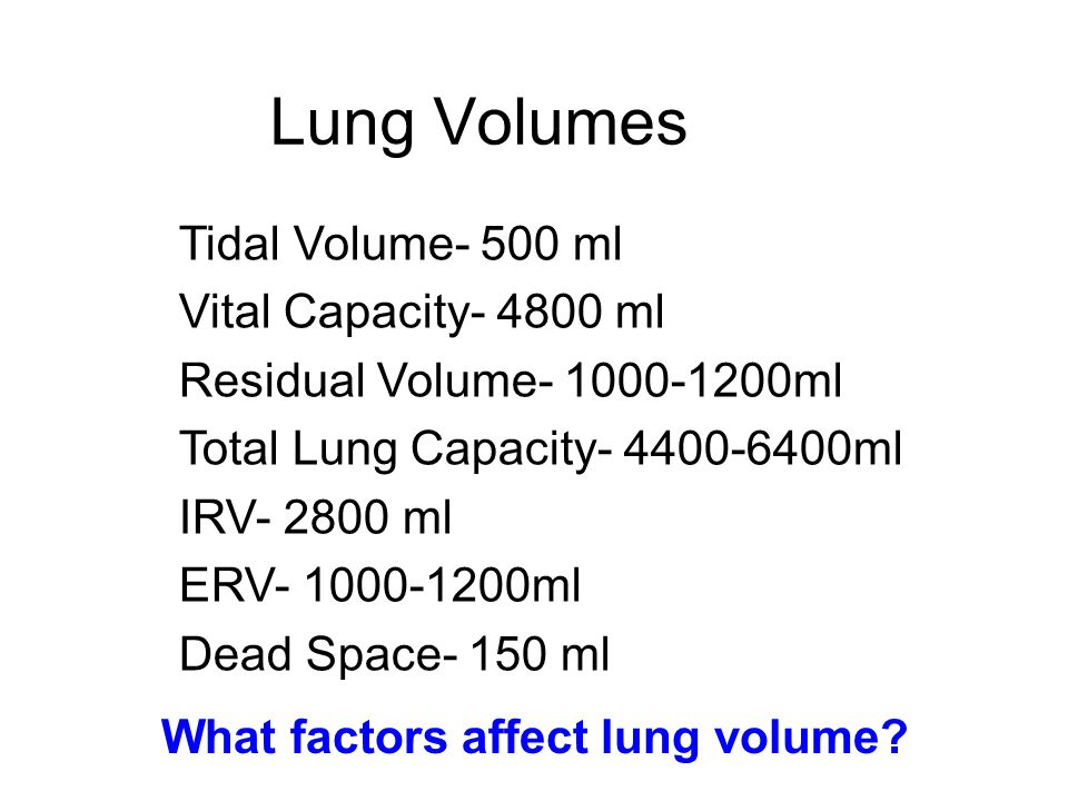 Lung Volumes Tidal Volume- 500 ml Vital Capacity- 4800 ml