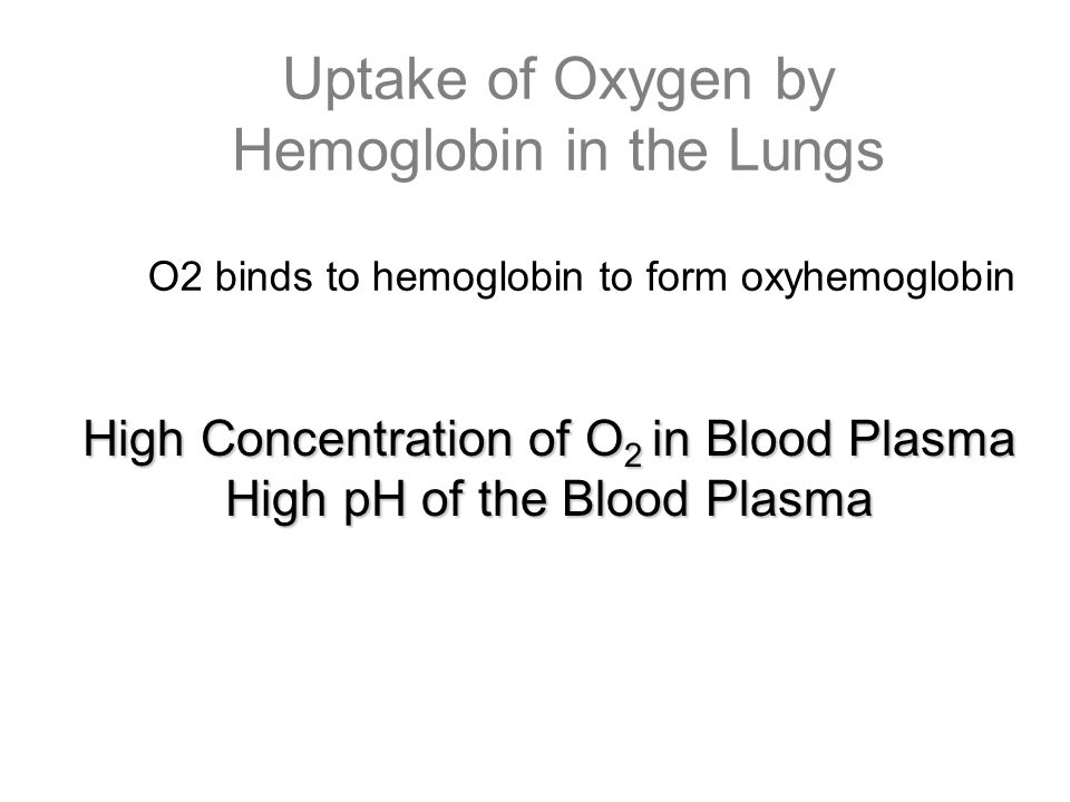 Uptake of Oxygen by Hemoglobin in the Lungs