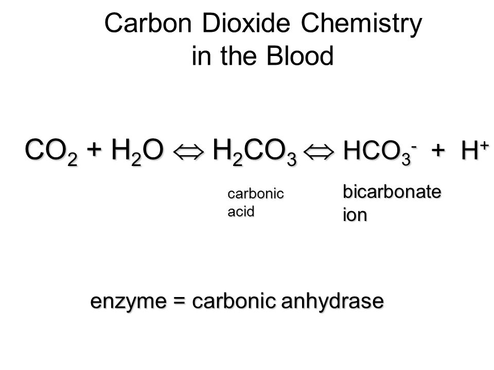 Carbon Dioxide Chemistry in the Blood